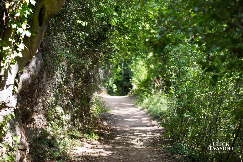 Sillans-la-Cascade 9 AOUT 2015-1-22